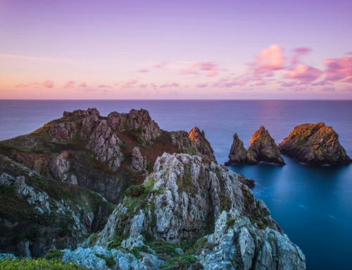 Channel Islands Discovery Evening