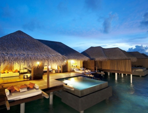 Surf's Up – Ayada Maldives is kicking up a splash in the Indian Ocean